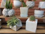 How to Make DIY Concrete Shelves Potted Tree