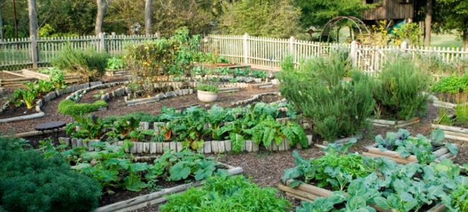 How to Plant a Potager Garden Raised Garden Design Potager French on french cottage decor, french vegetable garden, french chateau house, french garden house, french summer garden design, french courtyard garden design, french kitchen garden, edible landscape design, potager vegetable garden design, french garden sheds, french style gardens, french renaissance garden, french herb garden, french greenhouse, french formal garden design, french intensive garden design, french cottage gardens, french pool garden design, french country garden, french garden plan,