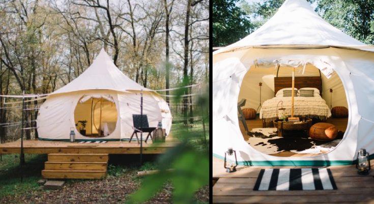 Camping Spot Has Yurts and Miniature Animals!